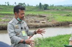 Mentan SYL Siapkan Tiga Agenda Membantu Petani Korban Banjir Bandang Sukabumi - JPNN.com