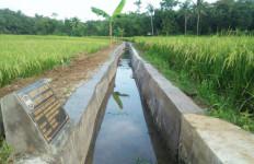 Produktivitas Pertanian di Ciamis Meningkat Jadi 8 Ton/Ha dengan RJIT - JPNN.com