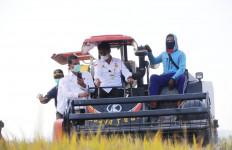 Panen Padi di Konawe Selatan, Mentan SYL: Jadilah Pejuang Pertanian - JPNN.com