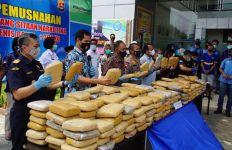 Bea Cukai di Banten dan Aceh Musnahkan Ratusan Kilogram Ganja - JPNN.com