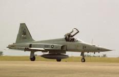 Jet Tempur F-5E Hilang Kendali di Udara, Pilot Terjun ke Laut - JPNN.com