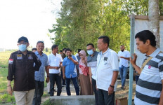 Andi Akmal DPR Memantau Pembangunan Bantuan Jaringan Irigasi Tersier - JPNN.com
