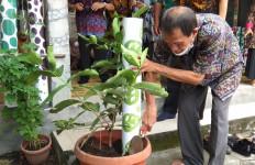 Keren, Bank Sampah Griya Sapu Lidi Sleman Launching Program 1.000 Losida - JPNN.com
