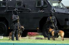 TNI Mengerahkan Pasukan Pengejar, Intel, dan Satgas Teritorial - JPNN.com