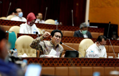 Anggota Komisi V DPR Puji Gagasan Gus Menteri soal SDGs Desa - JPNN.com