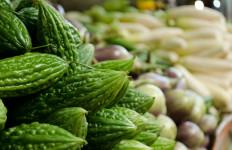 9 Manfaat Rutin Minum Air Rebusan Pare, Salah Satunya Bisa untuk Mengobati Diabetes - JPNN.com