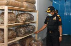 Bea Cukai Wilayah Jateng Gencarkan Edukasi dan Asistensi Ketentuan Cukai - JPNN.com
