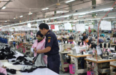 Bea Cukai Semarang Asistensi Kawasan Industri Kendal - JPNN.com