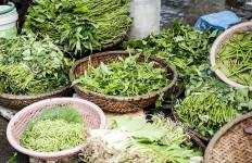 Bisa Kurangi Kadar Kolesterol, Ini 5 Manfaat Kangkung untuk Kesehatan - JPNN.com