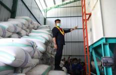 Tindaklanjuti Arahan Presiden Jokowi, Mentan SYL Resmikan Vertical Dryer di Sulsel - JPNN.com