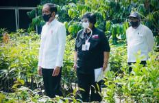 Menteri LHK: Pembangunan Persemaian Benih Dilakukan Secara Utuh - JPNN.com