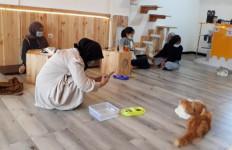 Konsep Kafe yang Satu Ini Unik dan Bikin Gemas, Jangan Ganggu yang Lagi Tidur ya - JPNN.com