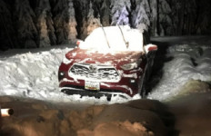 Mobil Ini Terjebak di Hutan Selama 2 Hari Gara-gara Navigasi - JPNN.com