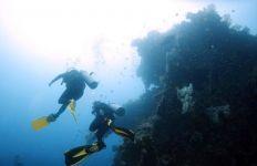 Pengin Scuba Diving? Diver Pemula Harus Penuhi Syarat Ini - JPNN.com