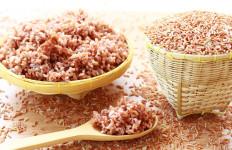 Apakah Tidak Masalah Konsumsi Nasi Merah Setiap Hari? - JPNN.com