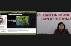 Rehabilitasi Mangrove, Menteri LHK: Penting Penguatan Koordinasi Kelembagaan - JPNN.com