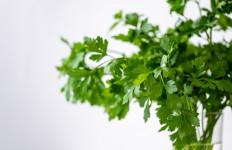 Usir Bau Badan dengan Mengonsumsi 3 Sayuran dan Buah Ini - JPNN.com