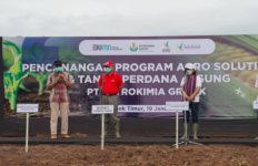 Luncurkan Program Agro Solution di Lombok Timur, Petrokimia Gresik Tanam Jagung Perdananya - JPNN.com