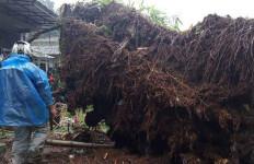 Puncak Bogor Bencana Lagi, Habis Banjir Bandang Kini Longsor - JPNN.com
