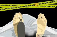Polres Langkat Tangkap Tersangka Pembunuhan Sadis terhadap Seorang Perempuan - JPNN.com