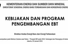 Industri Energi Terbarukan Diperkirakan Makin Baik Tingkat Keandalannya - JPNN.com