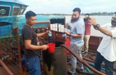 Perkembangan Terbaru Soal Kapal Tanker Bermuatan BBM Ilegal - JPNN.com