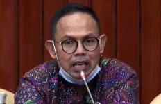Peternak Ayam Lokal Babak Belur Dihantam Kebijakan Impor, Politikus PKS Bereaksi Begini, Menohok - JPNN.com