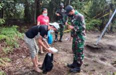 Satgas Pamtas RI-Malaysia Amankan 12 orang PMI Ilegal, Nih Penampakannya - JPNN.com