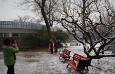 China Dilanda Cuaca Ekstrem: Kabut Tebal, Hujan Es hingga Gelombang Dingin - JPNN.com