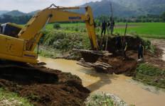 Distan Tulungagung Pantau 876 Hektare Sawah Terendam Banjir, Rejongan Terparah - JPNN.com