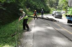 Tiang Listrik Tumbang Hantam Mobil Penumpang, Sopir Terluka - JPNN.com