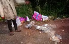 Misteri Belasan Bangkai Kucing dalam Kantong Plastik Terungkap, Pelakunya Ternyata Josef Fayness - JPNN.com