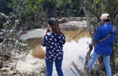 Ribuan Ikan Mati Mendadak di Aliran Sungai Kampung Tengah Muarabulian, Sengaja Diracun - JPNN.com