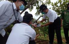 Kulon Progo Punya Agro Eduwisata, Coba Deh Tengok! - JPNN.com