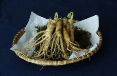 5 Manfaat Ginseng yang Baik untuk Menurunkan Berat Badan - JPNN.com