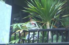 Penyidik KPK ke Jakarta Timur, Ternyata Lokasi Ini yang Dituju - JPNN.com