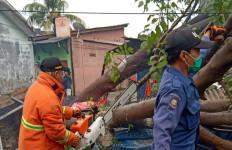 Hujan Badai Guyur Kota Bekasi, Banyak Pohon Tumbang - JPNN.com