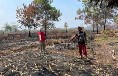 Polda Kalbar Tangkap Tersangka Pembakar Lahan di Pontianak - JPNN.com