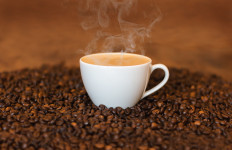 Benarkah Kafein pada Kopi Bisa Mencegah Kanker Kulit? - JPNN.com