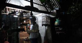 Densus Kembali Tangkap Seorang Terduga Teroris di Surabaya, Ada Senjata Laras Panjang