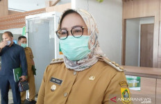 Ade Yasin: Mendengar Pernyataan Pak Jokowi, Saya Setuju - JPNN.com