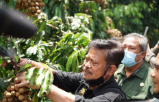 Mentan Syahrul Yasin Limpo Dorong Pengembangan Agrowisata Buah - JPNN.com