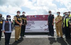 Bea Cukai Luncurkan Ekspor Langsung Hasil Perikanan dari Manado ke Singapura - JPNN.com
