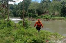 Tim SAR Cari Lansia Petani, Diduga Hilang di Hutan Kolaka - JPNN.com