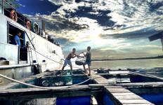 Bea Cukai Kawal Ekspor Ikan dan Produk Perikanan di Berbagai Daerah - JPNN.com