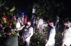 Satu Unit Avanza Ringsek Tertimpa Pohon di Lokasi Longsor Jalinsum Sibolga-Tarutung, Nih Fotonya - JPNN.com