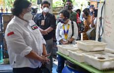 Program Kampung Iklim, Menteri Siti Mengajak Warga Bergaya Hidup Ramah Lingkungan - JPNN.com