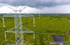 PLN Kalbar Menyalakan Listrik di Delapan Desa Perbatasan Indonesia-Malaysia - JPNN.com