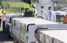 Bea Cukai Banyuwangi Turut Lepas Ekspor 1 Ton Koral ke Hong Kong - JPNN.com