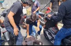 Polisi Gerak Cepat, ZN Ditangkap Saat Hendak Kembali Menjambret, Lihat Fotonya - JPNN.com